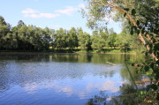 Der Teich an der Bünder Straße