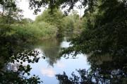 Teich am Schulbach